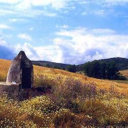 Pozo en Montemolín